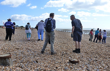 beach-cleaning-in-rother